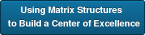 Using Matrix Structures to Build a Center of Excellence